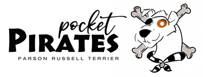 Pocket Pirates - Parson Russell Terrier