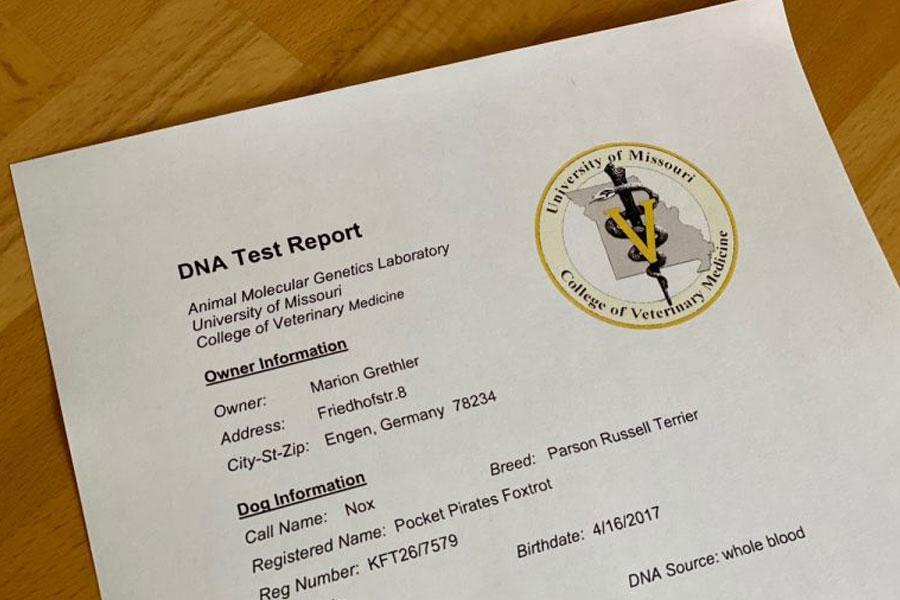 DNA-Testergebnisse